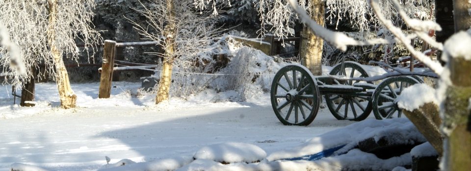 Boerenkar-in-de-sneeuw